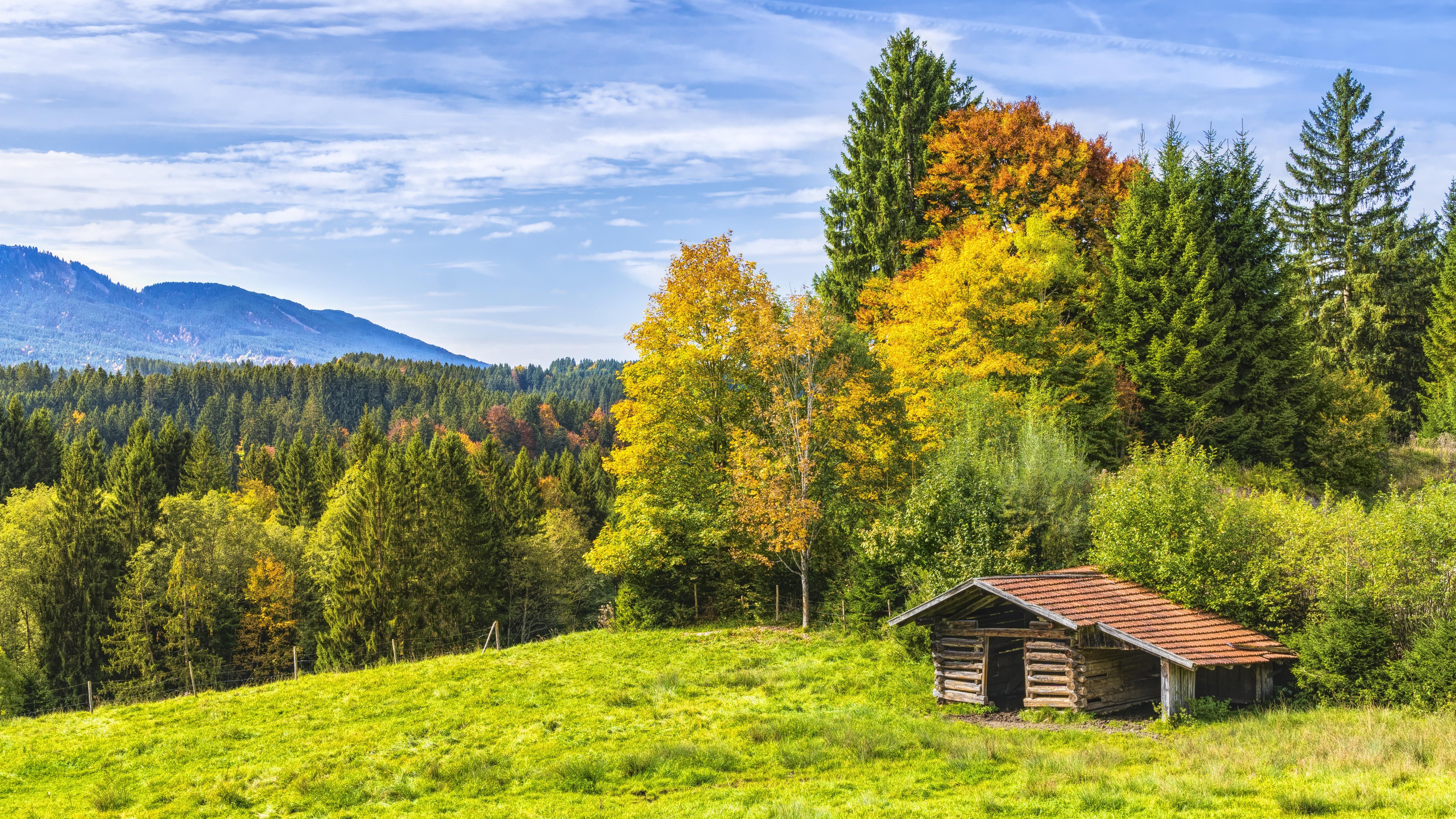 Portaria n 487/2021 institui a modalidade Floresta+Agro